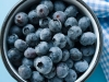 Blueberries-Photo