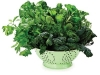 Green-Leafy-Vegetables-mixture-fresh