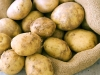 Potato-Photo.pg_