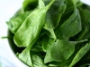 Spinach-pg-nutrition-label-jpg
